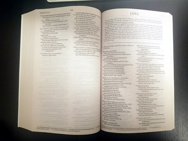Best Children's Bible   after buying all of them - Better
